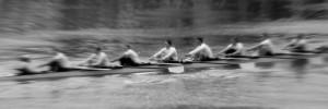 Sweep oar eight
